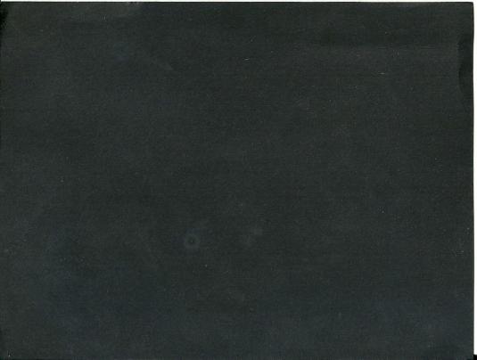 Lisa - 7.3.2014 - 1
