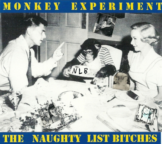 Monkey Experiment - cover